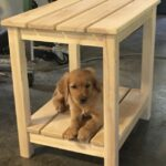 Golden Retriever Puppy on an ash Adirondack table.
